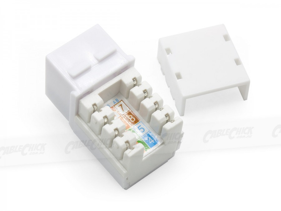2x CAT6 Wall Plate (RJ45 Keystone Punchdown) (Photo )