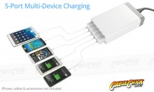 5-Port 8A Desktop USB Charger with Smart-Power Delivery (White) (Thumbnail )