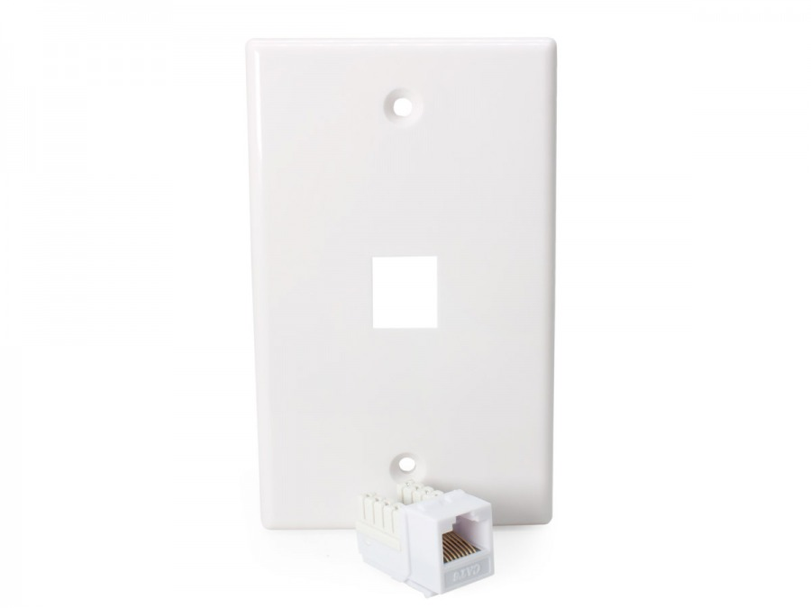 1x CAT6 Wall Plate (RJ45 Keystone Punchdown) (Photo )