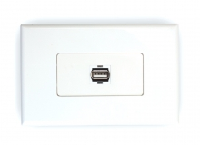 1x USB 2.0 Wall Plate (Type A Female) (Photo )