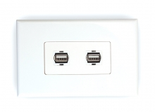 2x USB 2.0 Wall Plate (Type A Female) (Photo )
