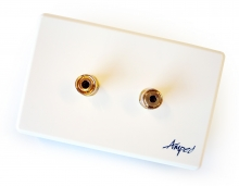 Amped Classic Single Speaker (White Wall Plate)