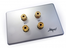 Amped Slimline 2 Speaker (Brushed Aluminium Wall Plate)