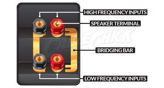 Anatomy of a speaker terminal